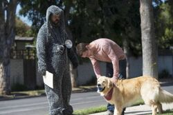 Wilfred 3x07 01