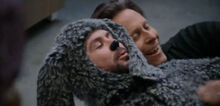 Wilfred-c