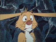 Rabbit Frightened