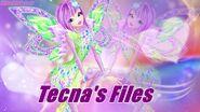 Help:Tecna's Files