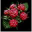 File:Tw3 raspberries.png