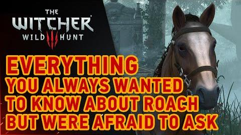 The Witcher 3- Wild Hunt - Roach