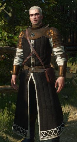 File:Tw3 Oathbreaker armor.png