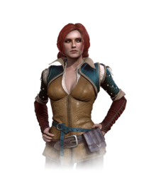 Tw3 journal triss