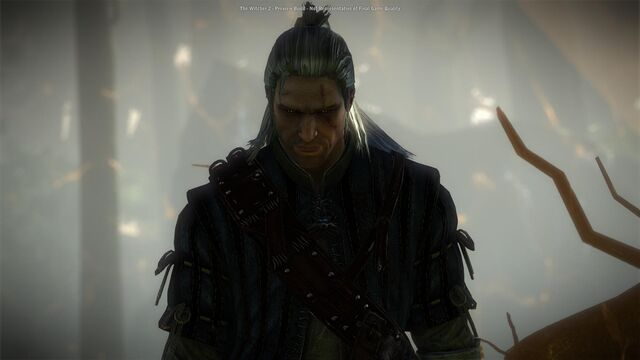 File:Witcher2-2011-04-25-00-16-19-961.jpg