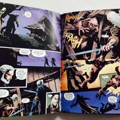Some pages of the German Special edition of The Witcher comic book