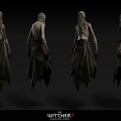 Wraith type one renders