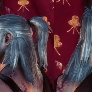 Rivian ponytail