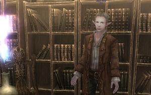 Magic-shop-clerk