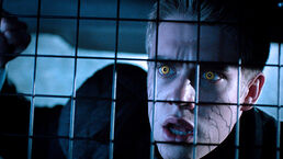 Wolfblood-article-what-happened 720x405