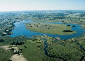 Okavango delta(www okavango info)