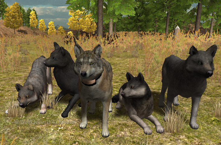 WolfQuest: Saving Wolves in 3D – Triangle Jump - photo#35