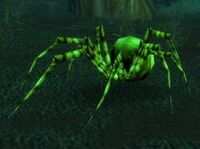 Green Recluse