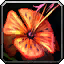 Inv misc herb tigerlily.png