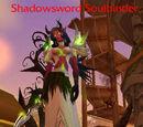 Shadowsword Soulbinder