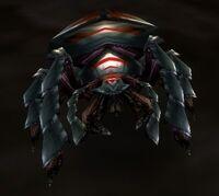 Borer Beetle