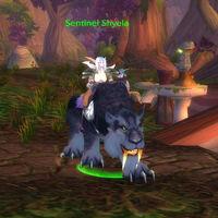 Sentinel Shyela