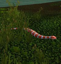MarshSerpent