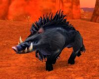 Corrupted Mottled Boar