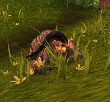 Wyrmhorn Turtle