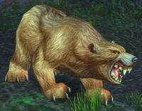 Giant Ashenvale Bear