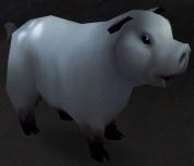 Warsong Swine