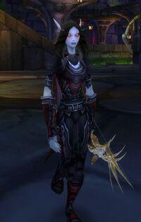 Dark Ranger Anya