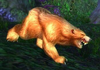 Elder Ashenvale Bear