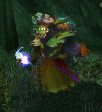 Shienor Sorcerer