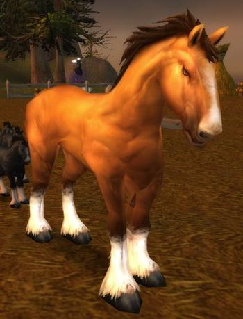 Havenshire Stallion