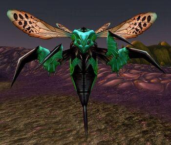 Hazzali Wasp