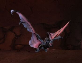 Greater Kraul Bat