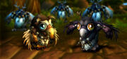 MoonkinHatchlings