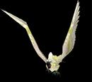 Parrot Cage (Cockatiel)
