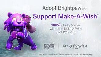 New World of Warcraft Pet Brightpaw
