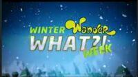 WinterWanderWhatWeek