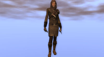 Silver Dagger Bandit