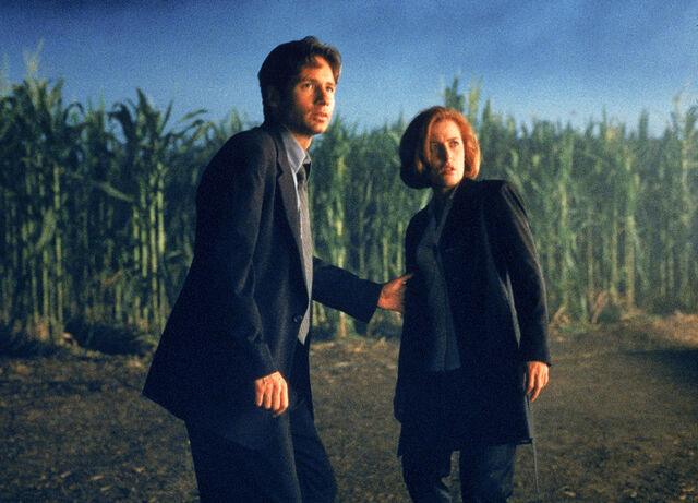 File:Cornfield Texas Mulder Scully Fight the Future.jpg