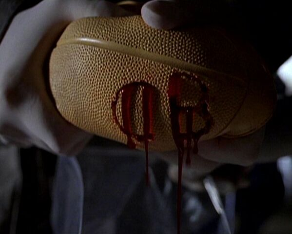 File:Blood-filled ball.jpg