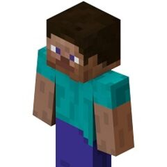 The default skin of Minecraft (known by many as Steve)