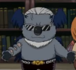 Lucifer Koala