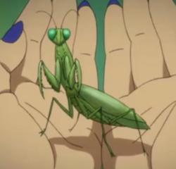 Seiya Animal