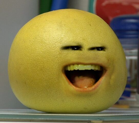 File:Grapefruit0.jpg