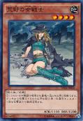 WarriorLadyoftheWasteland-DC01-JP-C