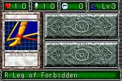 RLegofForbidden-DDM-EN-VG