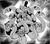 WickedPriestChilamSabak-EN-Manga-5D-CA.png