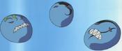 MaskedBeastDesGardius-JP-Anime-DM-NC-2