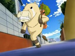 Goin' Ponygon