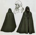 Twilight Princess Artwork Princess Zelda - Hooded Zelda (Concept Art).png