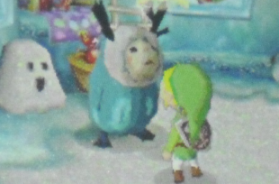 File:Link and Anouki.png